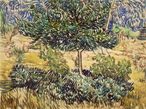 vangogh-Garden-of-the-Asylum